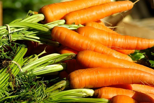 When to harvest vegetables