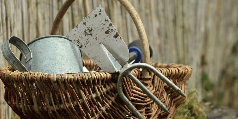 Gardening tools for beginners