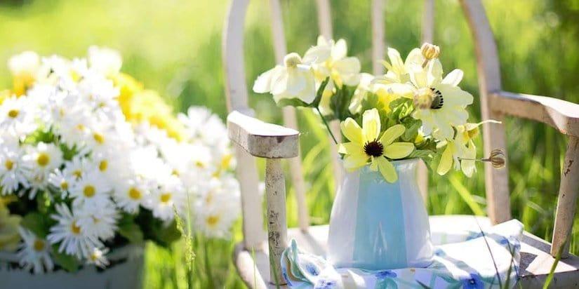Gardening creative ideas