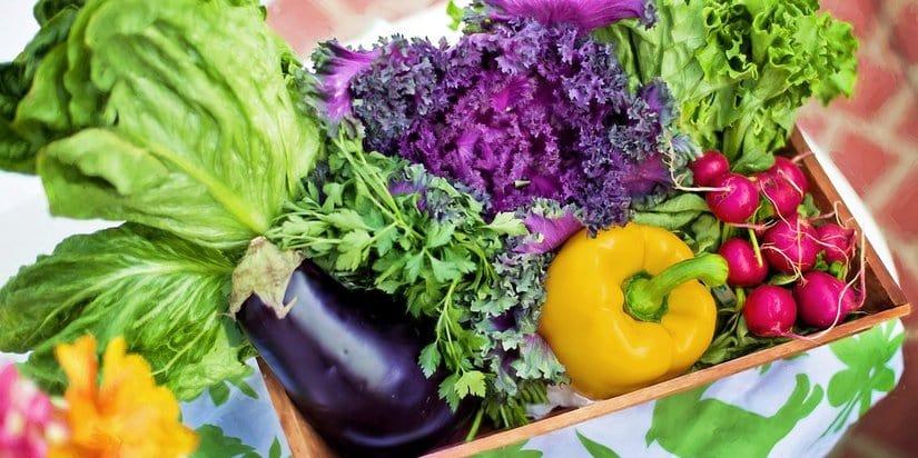 Useful and Easy Tips On Organic Gardening