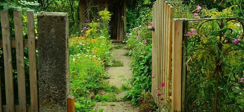 Renovating Your Garden - Without Breaking the Law!
