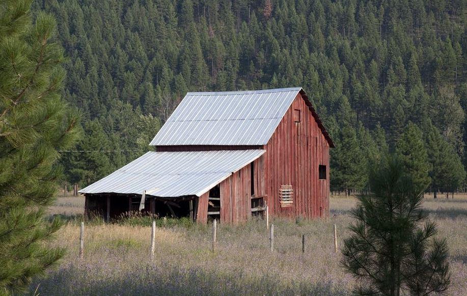 Build a farm shed