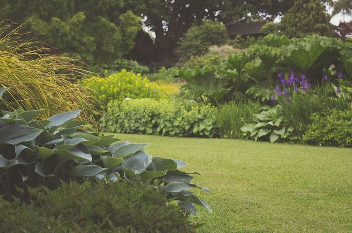 Making the most of the nature around your home