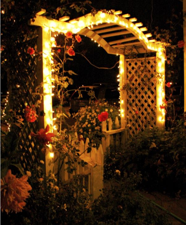 Enjoy your garden at nigh