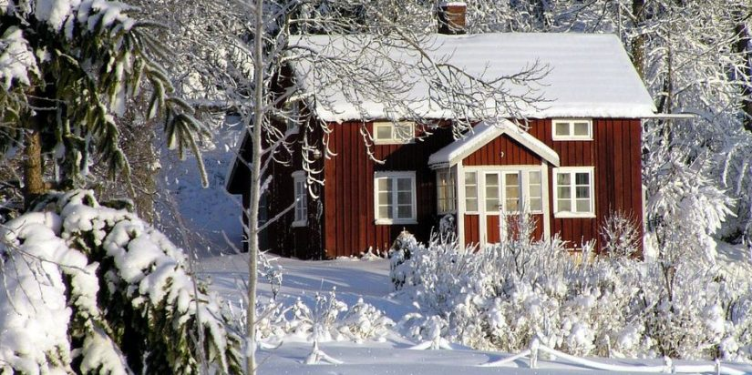 Protect your garden during winter