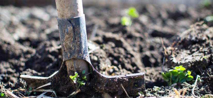 Is Your Garden Feeling A Little Flat?