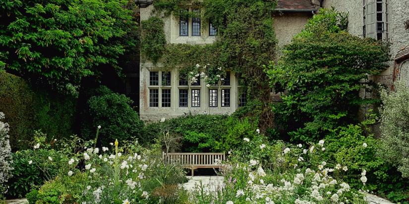 Lavish Garden Ideas