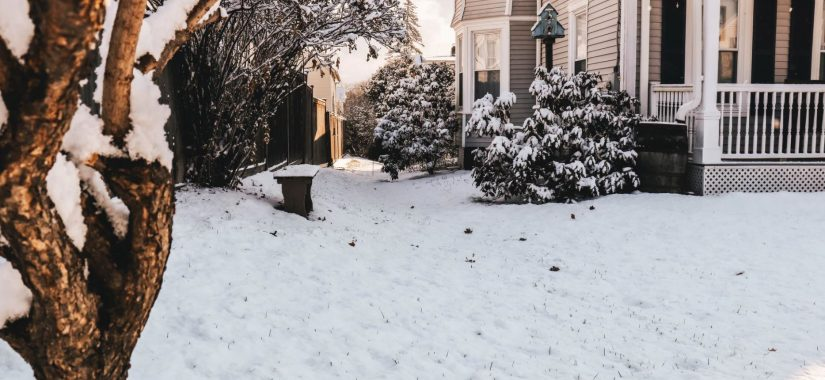 Let It Snow (But Not On Your Lawn!)